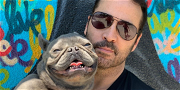 Jeremy Piven's French Bulldog, Bubba, DIES In His Arms — 'It's Hard To Stop Crying'