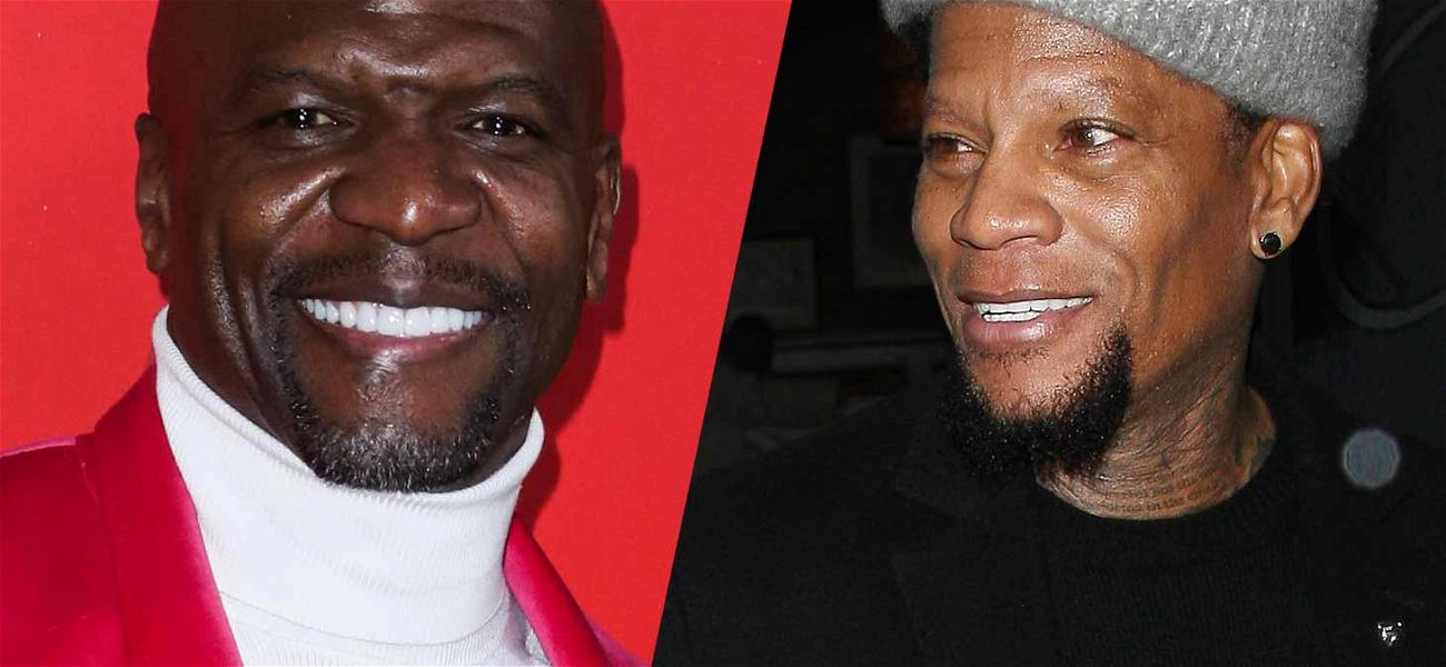Terry Crews Goes After D.L. Hughley Over Sexual Assault Criticism: 'Should I Slap the S–t Out of You?'