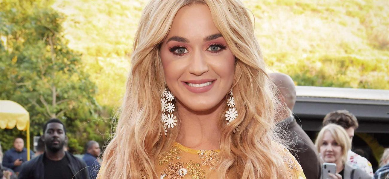 Katy Perry Asks for Her Wealth to Not Be Discussed in Upcoming Trial Over 'Dark Horse'