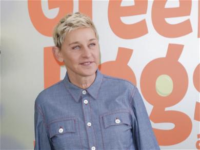 Fans Believe Ellen DeGeneres is Making a Statement with Lego Video After Being Slammed by Staff