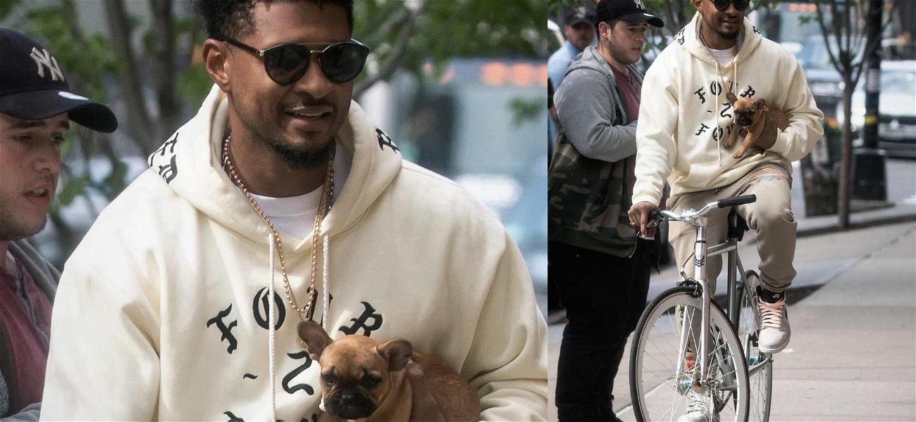In Happier French Bulldog News … Check Out Usher and this Puppy!