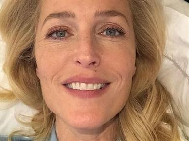 After Split With Peter Morgan, Gillian Anderson Has New GF