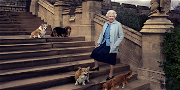 The Queen Received A New Corgi Puppy From Prince Andrew