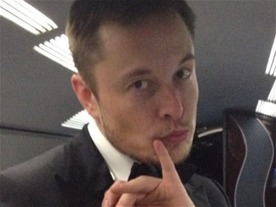 Elon Musk Defends Amber Heard, Takes On Johnny Depp Fans After Son Is Born
