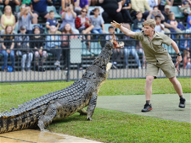 Robert Irwin Shared An Incredible Side-By-Side Of Him And His Dad Feeding The Same Croc
