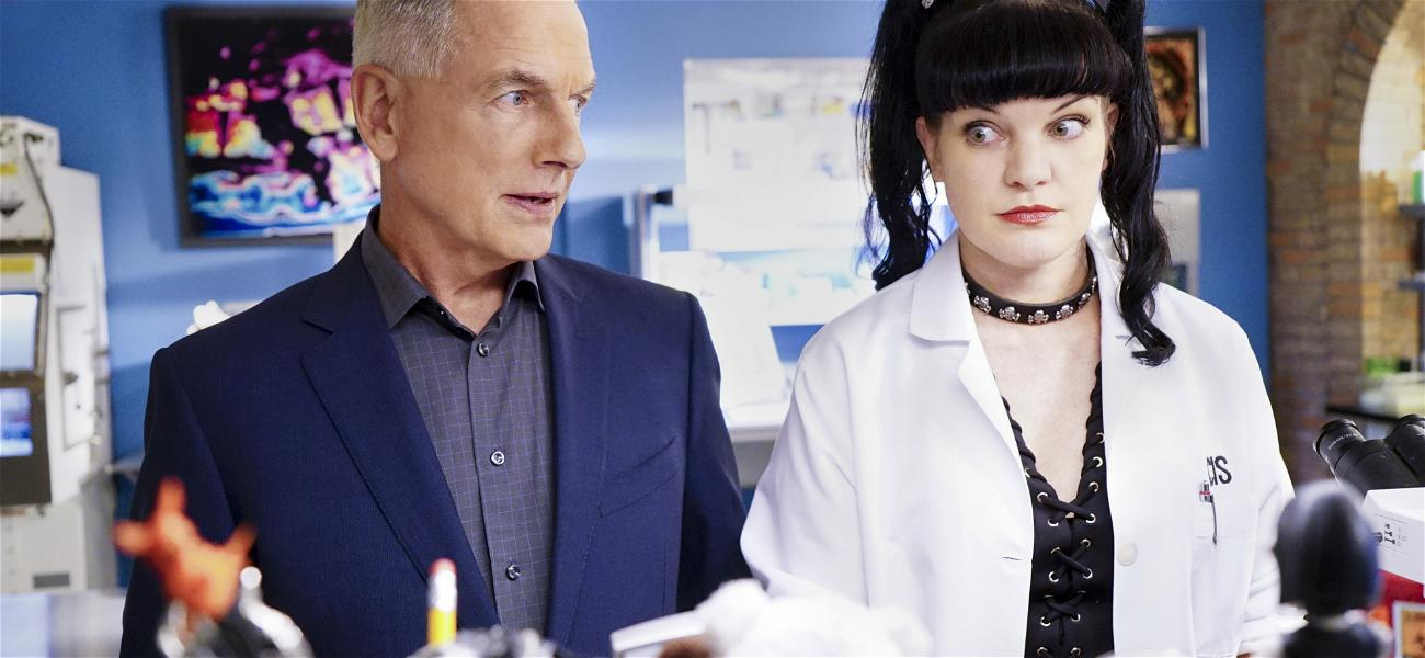 Pauley Perrette's Relationship Cooled With Mark Harmon After Dog Bite