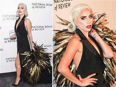 Lady Gaga's Oversized Ruffle of Feathers Outshined the Star After 'Best Actress' Win