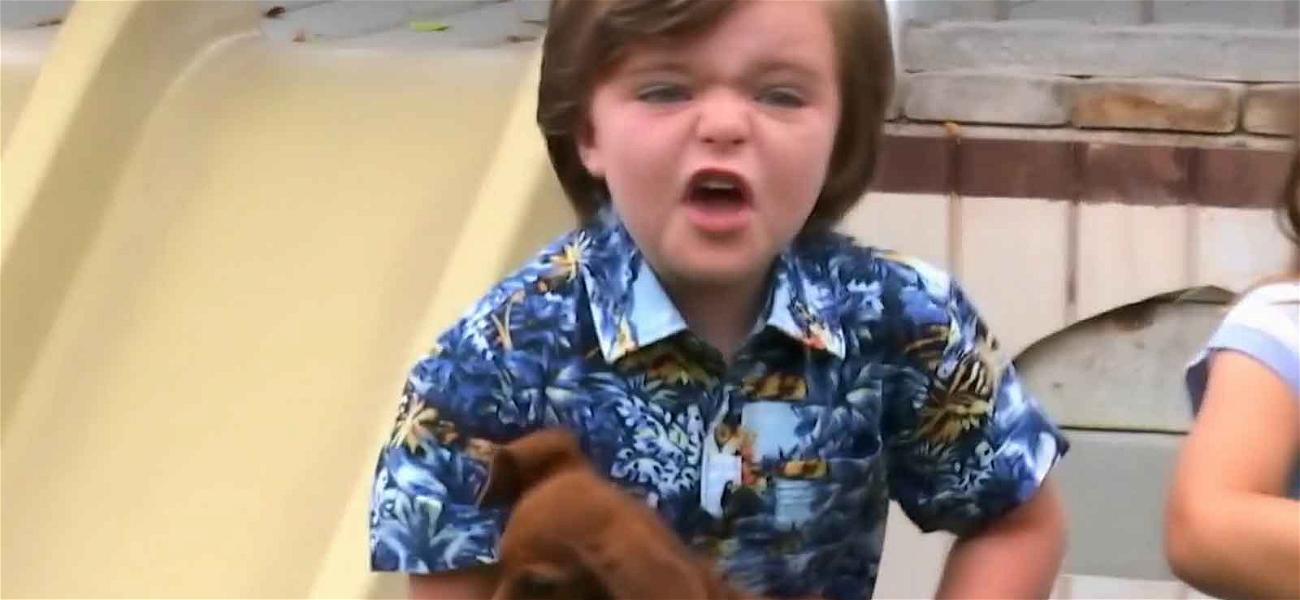 'The Secret Life of Kids' Pint-Sized Star Loses It Over Adorable Puppies