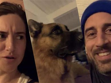 Aaron Rodgers & Shailene Woodley Argue And Bond Over Dog During First IG Post Together