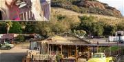 Famed Celeb Malibu Winery Missing Animals After Fire