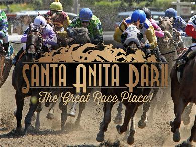 L.A. District Attorney Launches Task Force to Investigate Horse Deaths at Santa Anita Racetrack
