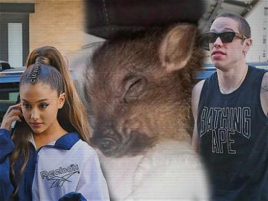 Experts Worry About Ariana Grande's Pet Pig in Breakup with Pete Davidson