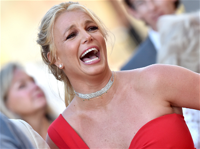 Britney Spears Raked In Over $2.5 Million Last Year, 80 Trips to Target