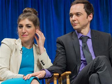 A New TV Series Starring 'Big Bang Theory' Co-Stars Is In the Works